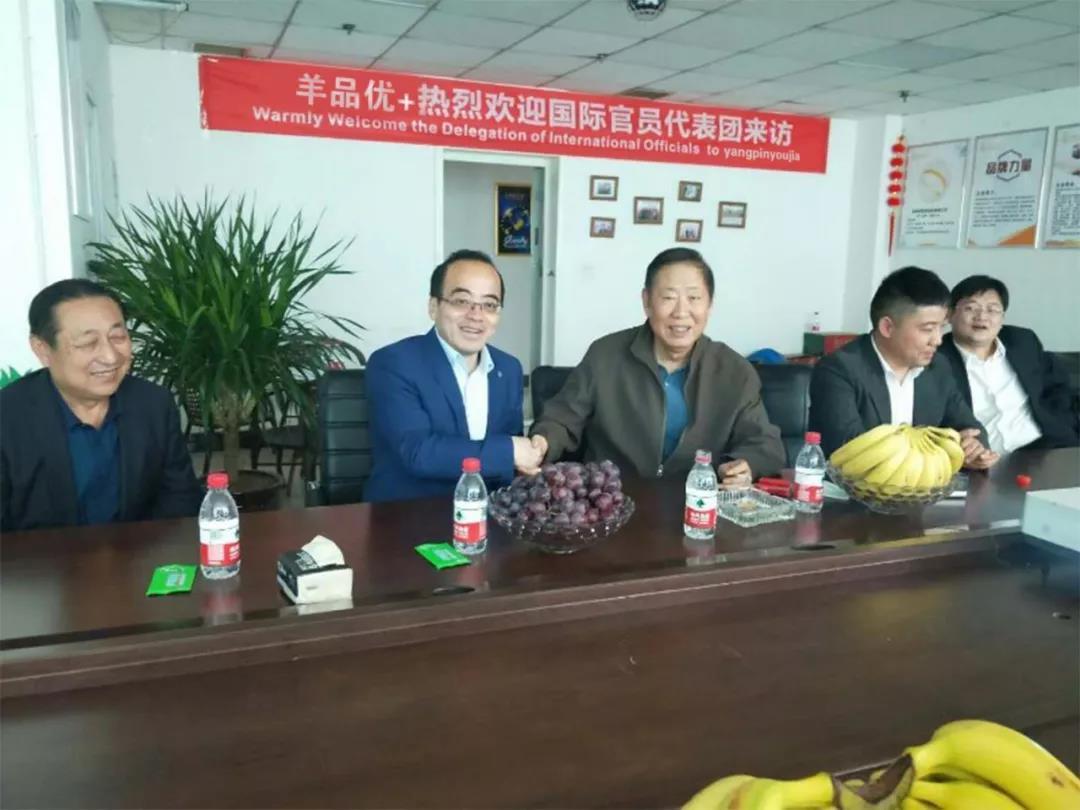羊品优控股有限公司,热烈欢迎国际官员代表团来访!